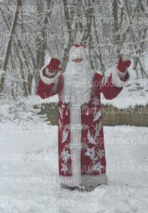 Дед Мороз на дом в Киеве